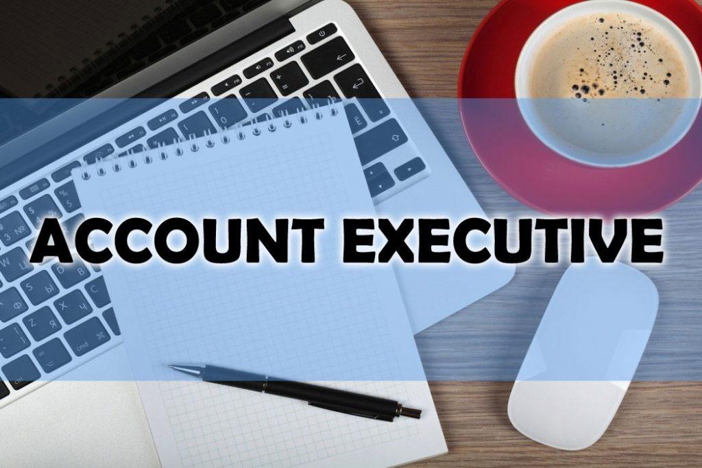 lộ trinh thăng tiến của account excutive trong Account Agency là gì