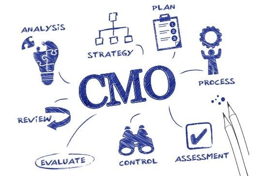 CMO là gì? Để trở thành CMO cần chuẩn bị những gì?
