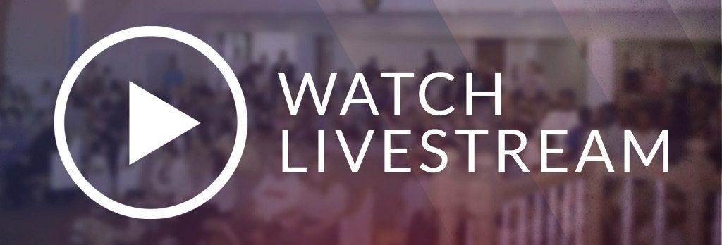 livestream la gì? xu hướng công nghệ video