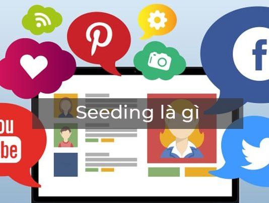 seeding là gì