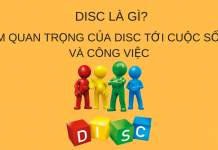 disc-la-gi-va-test-disc